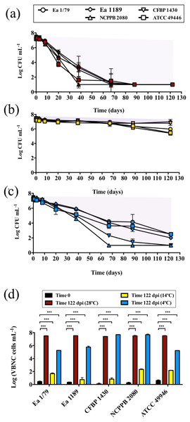 Analysis of E. amylovora culturable and VBNC cell populations during a long-term starvation period (122 days) at 28°C (A), 14°C (B) and 4°C (C).