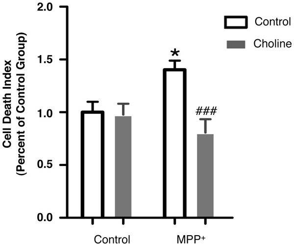 Choline protects SH-SY5Y cells against MPP+-induced cell death.