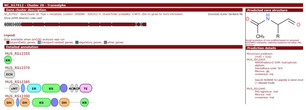Screenshot of website (http://bapgd.hygenomics.com/pangenome/home) for the visualization of Transatpks type cluster of Y2 (most similar known cluster to the Difficidin_biosynthetic_gene_cluster).