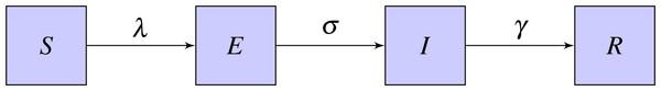 Basic SEIR model.