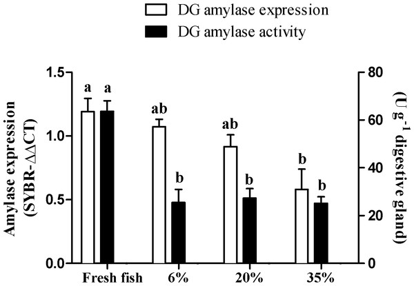 Alpha-amylase activity and gene expression in the digestive gland (DG) of Panulirus argus feeding.