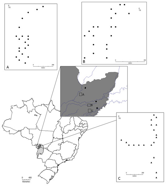 Geographical location of the localities where the beetles were collected for this study, Pantanal, Mato Grosso, Brazil.