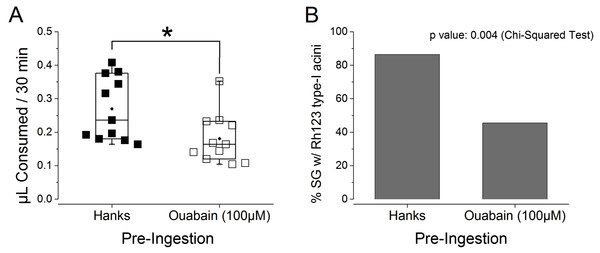 Effects of ouabain pre-ingestion on the absorption function of type I acini.