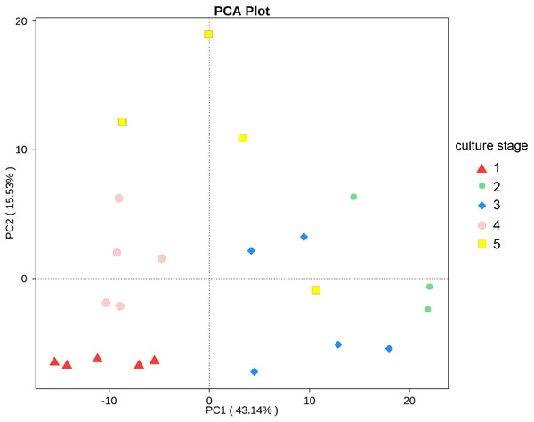 PCA shows the similarity of samples.