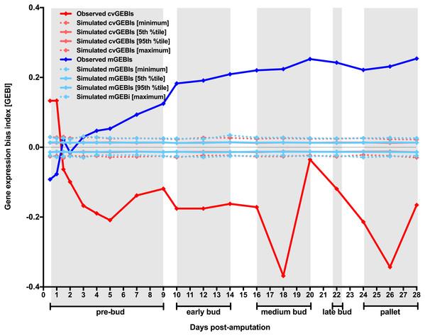 Temporal dynamics of the level and the heterogeneity in gene expression along axolotl forearm regenerative development.