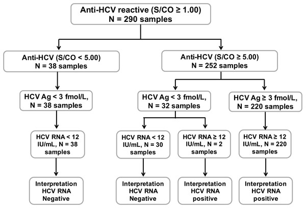 Schematic diagram of all 290 anti-HCV reactive samples.