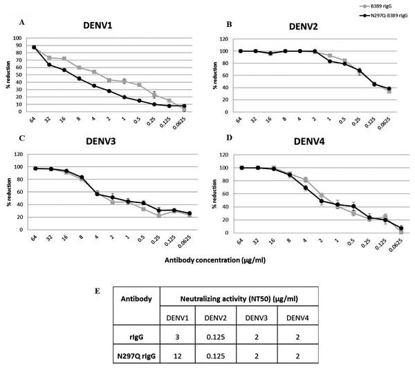 Neutralizing activity of N297Q-B3B9 and B3B9 rIgG antibody against four DENV serotypes.