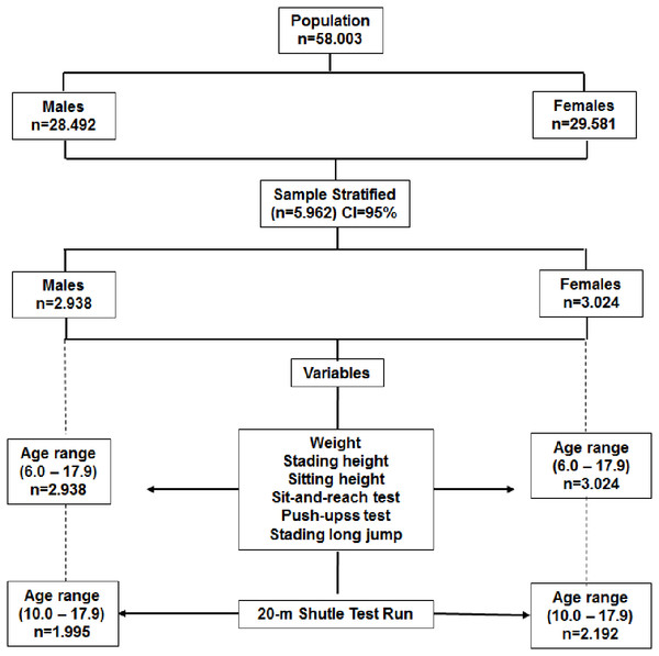 Flowchart outlined to select the study sample.