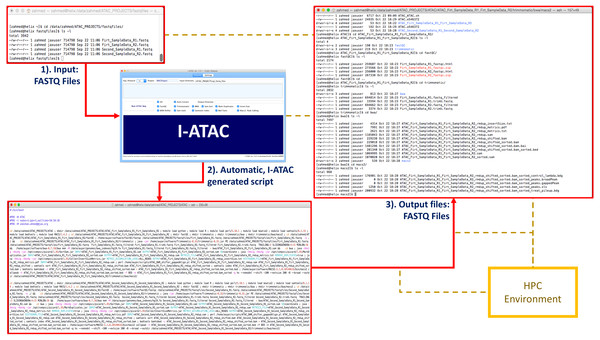 I-ATAC sample data input, script generation and outcome.