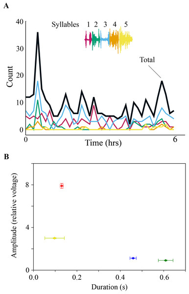 (A) SLA occurred throughout the night. Specific syllables are identified by color and are replayed with varying frequency during the night. The counts are occurrences of individual syllables as determined by the algorithm detection threshold during SLA. (B) Respiration during night-time SLA (green data point) was normal quiet respiration during sleep and differed in amplitude and duration from daytime quiet respiration (blue) as well as from day-time singing (red). In only one individual night-time SLA occurred occasionally with simultaneously song-like duration and increased amplitude of expiratory pulses (yellow data point).