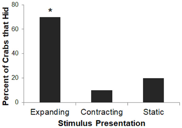 Percent of crabs that hid to the Expanding, Contracting, and Static conditions in Experiment 1.