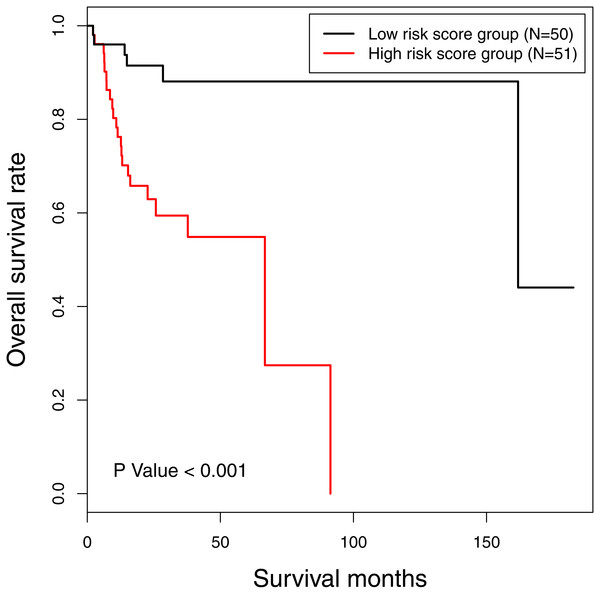 The Kaplan-Meier survival curve: the overall survival in patients with oral tongue squamous cell carcinoma according to risk score.