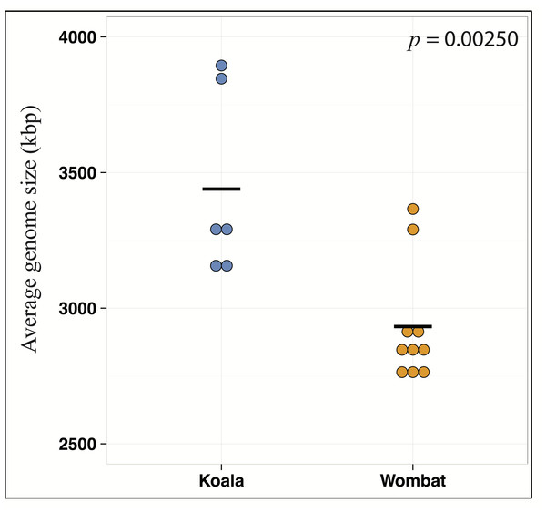 Metabolic differences between koala and wombat fecal microbiomes may reflect differences in average genome size.