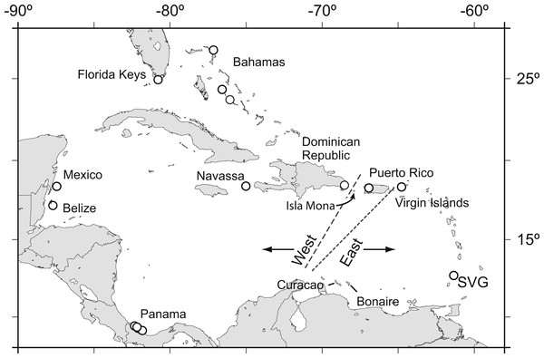 Acropora palmata samples were obtained from throughout the Caribbean and north-west Atlantic range.