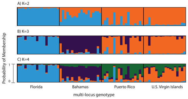 Bayesian cluster analysis of 307 SNP loci from Acropora palmata (n = 96).