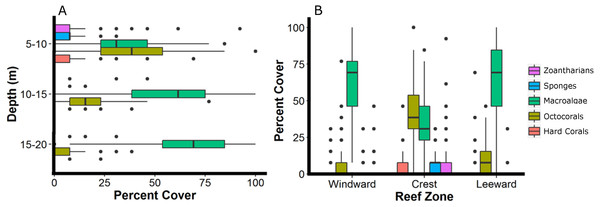 Relative abundance of the main groups of sessile organisms at different depth intervals (A) and zones (B) of Madagascar reef, Gulf of Mexico.