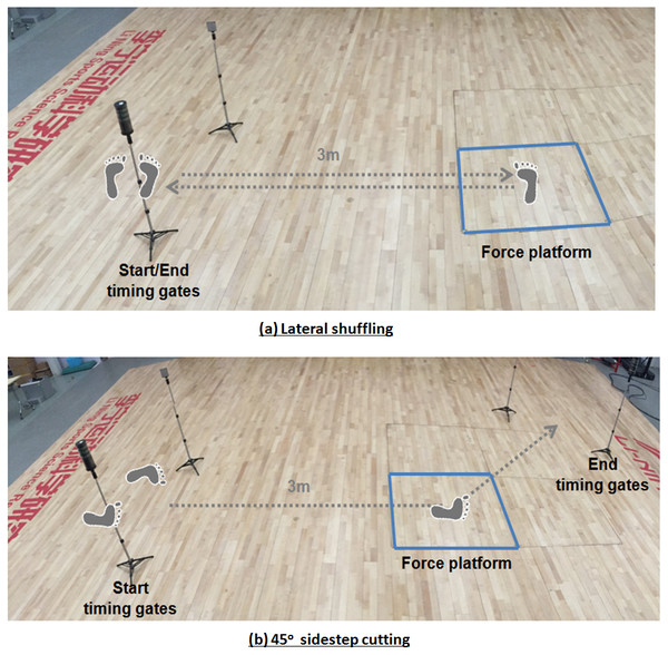 Movement tasks: (A) lateral shuffling and (B) 45-degree sidestep cutting.
