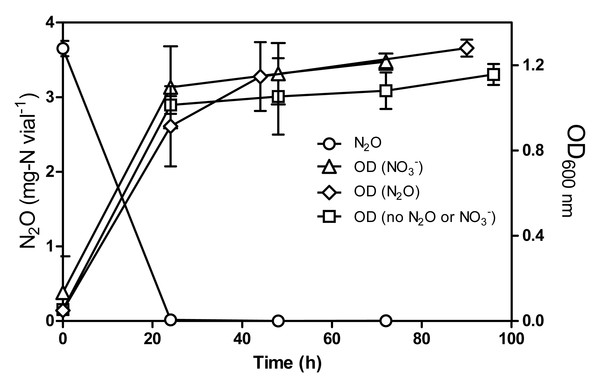 N2O consumption by Methylophaga nitratireducenticrescens JAM1 under oxic conditions.
