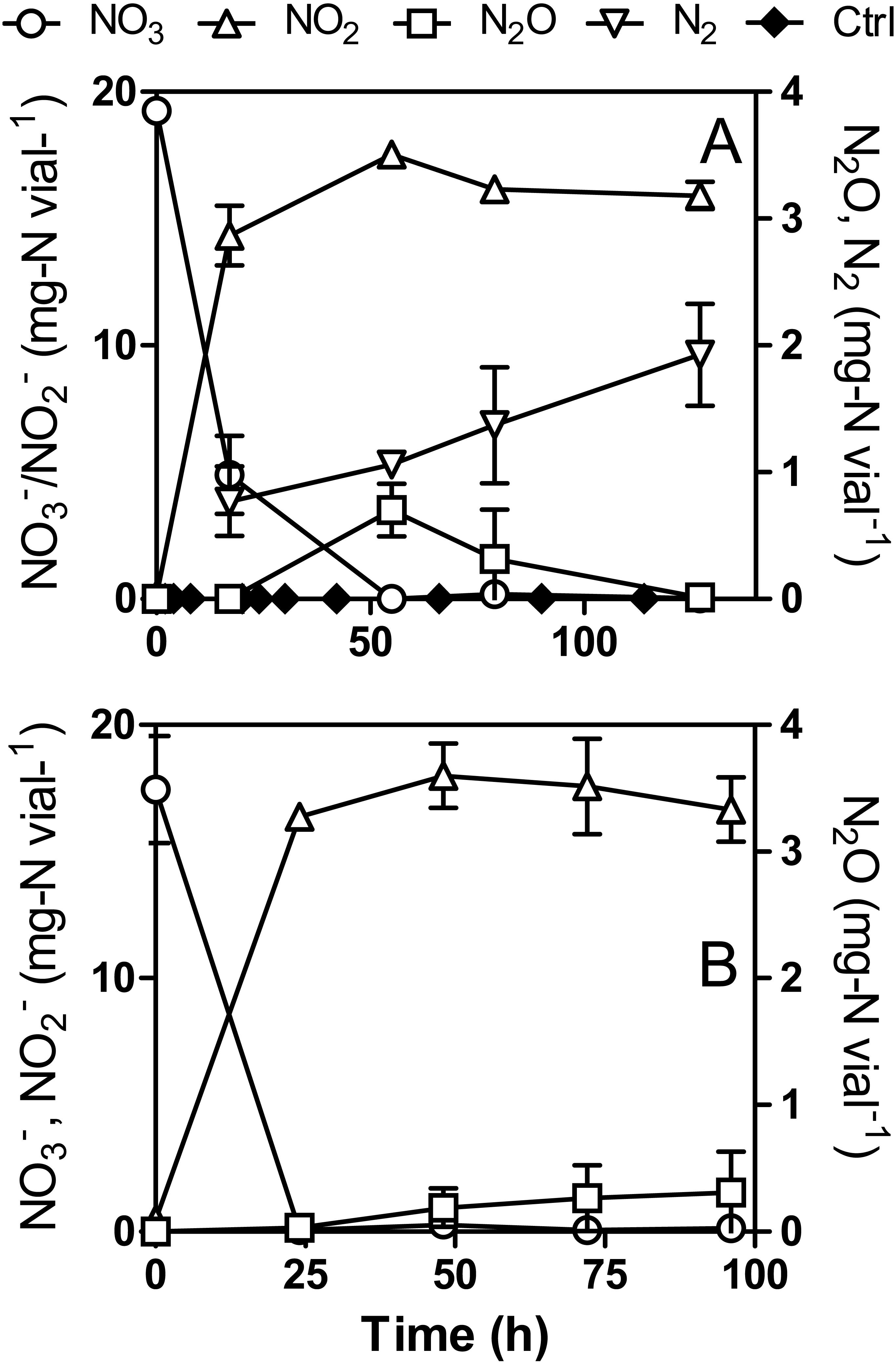 Denitrifying metabolism of the methylotrophic marine bacterium