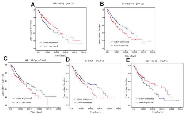 Kaplan–Meier survival curves for five miRNAs associated with overall survival.