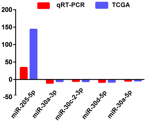 Quantitative real-time polymerase chain reaction validation of five aberrantly expressed key miRNAs.