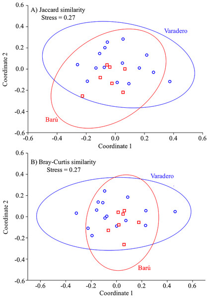 Fish presence-absence and abundance data for Varadero and Barú Reefs.