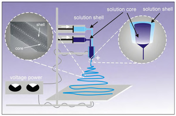 Diagram of the applied coaxial electrospinning process.