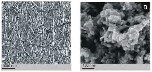 Assessment of the electrospinned nanofibres.