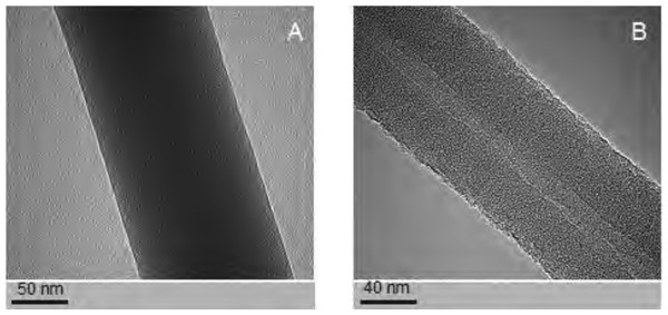 Examples of the nanofibres generated by electrospin, as assessed by TEM.