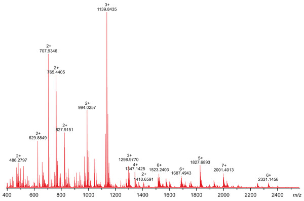 High-resolution mass spectrum of the tryptic digest of CAVI-PTX.
