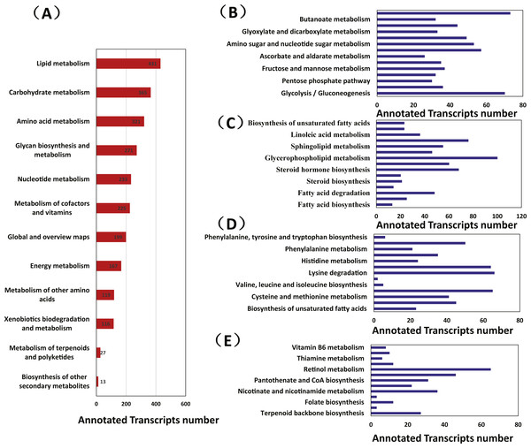 The metabolic pathway analysis of transcripts from Manis javanica.