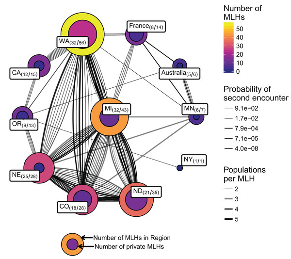 Network of populations (nodes/circles) and their shared multilocus haplotypes (MLH) (edges/lines) genotyped over 11 loci.