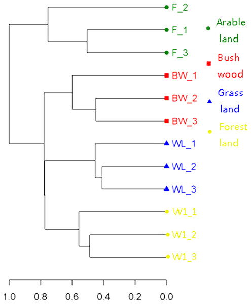 Clustering analysis of AMF communities based on OTU abundance for each soil.