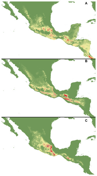 Distribution of suitable habitats of C. dickinsonianum (A), C. irapeanum (B) and C. molle (C) based on the most reliable MaxEnt model.