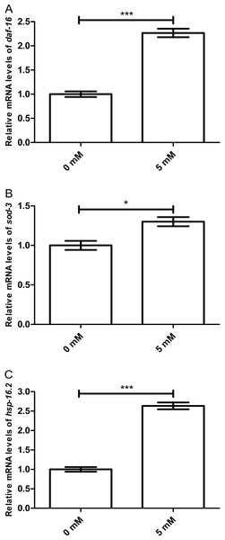 Effect of arbutin on relative mRNA levels of daf-16, sod-3 and hsp-16.2 in C. elegans.