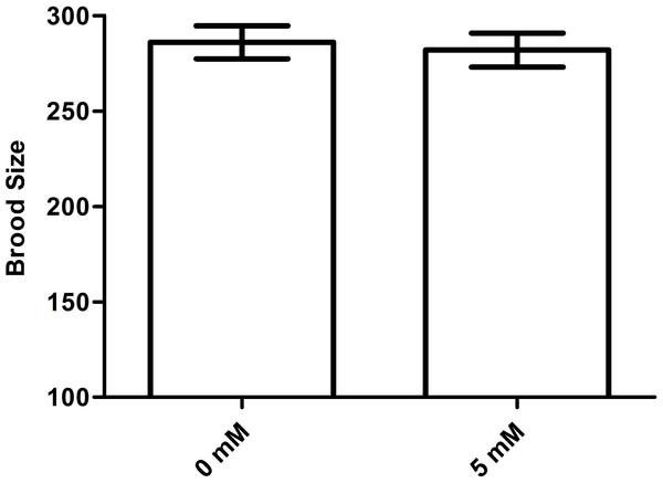 Effect of arbutin on brood size in C. elegans.