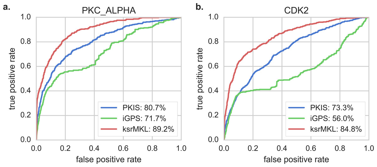 ksrMKL: a novel method for identification of kinase