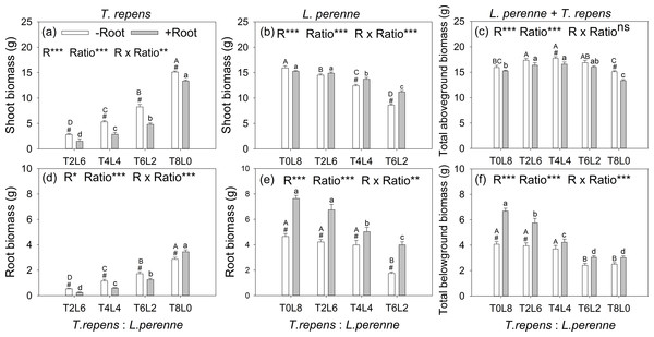 Effects of root interaction (R), planting ratio (Ratio) and their interactions (R × Ratio) on above- and belowground biomass of T. repens (A and D), L. perenne (B and E) and the total (E and F).