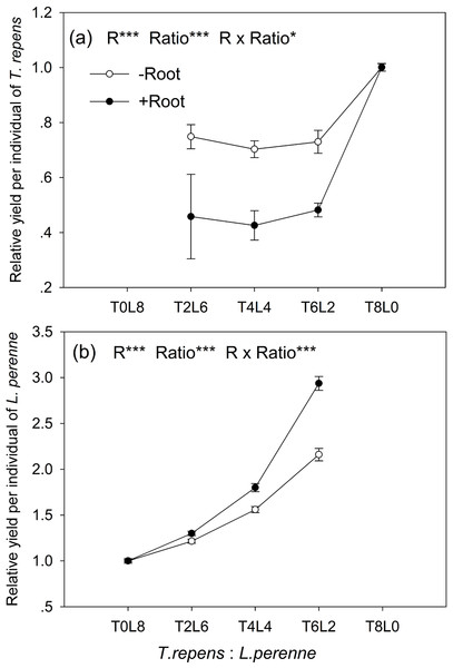 Effects of root interaction (R), planting ratio (Ratio) and their interactions (R × Ratio) on relative yield per individual (RYind) of T. repens.