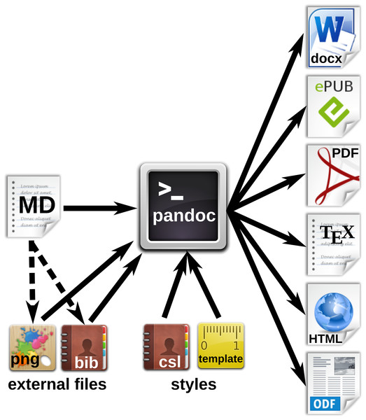 Workfow for the generation of multiple document formats with Pandoc.