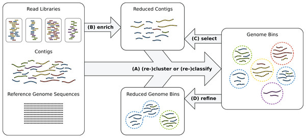 Genome reconstruction workflow.