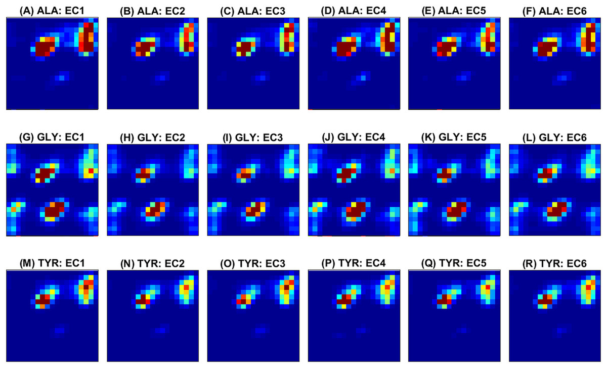 Prediction of protein function using a deep convolutional
