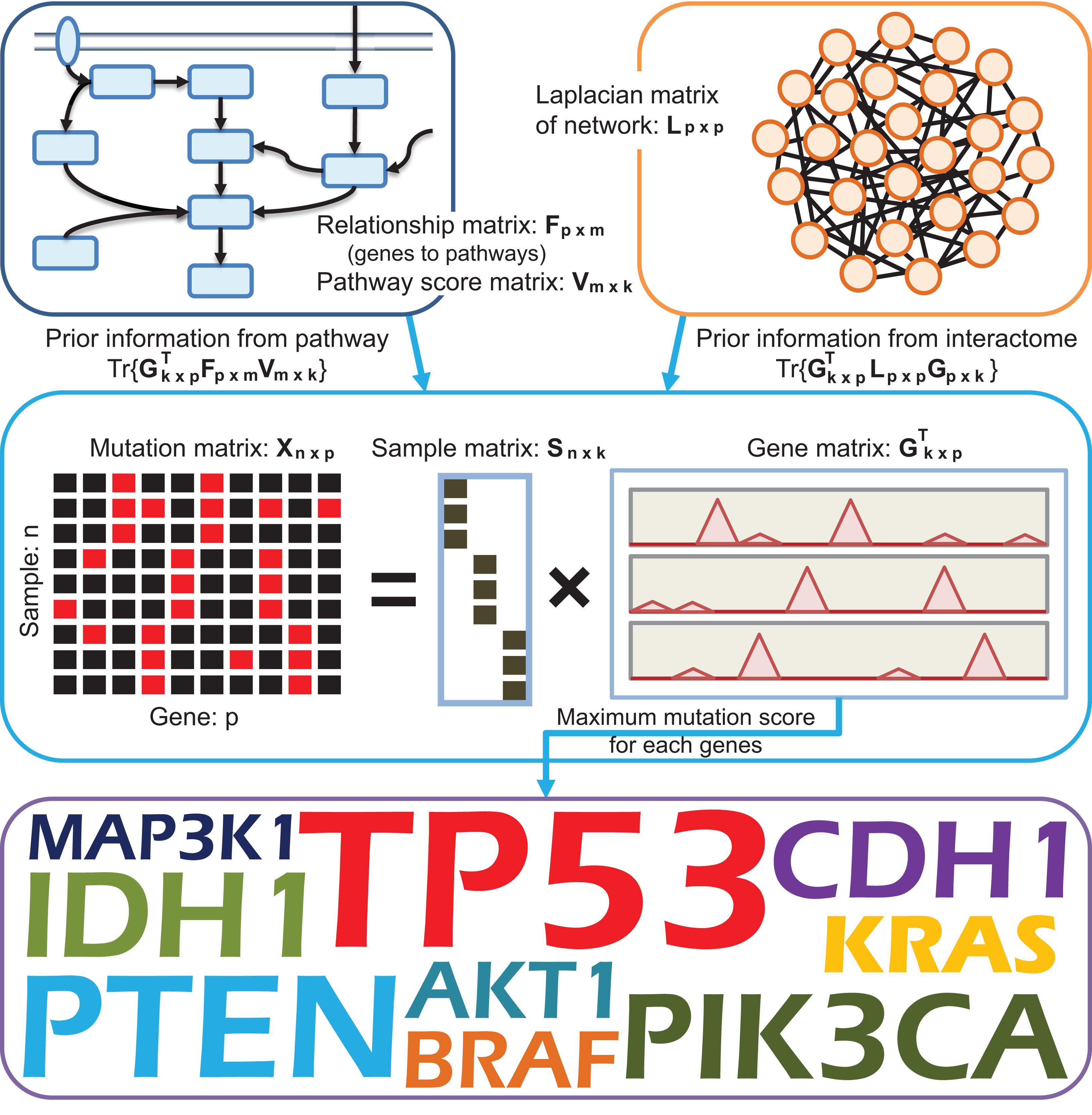 Dgpathinter A Novel Model For Identifying Driver Genes Via Internet Connection Diagram Sarine Light Download Full Size Image