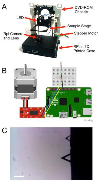 DIY microscope construction.