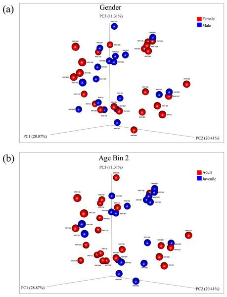 Principal components analysis of beta diversity.