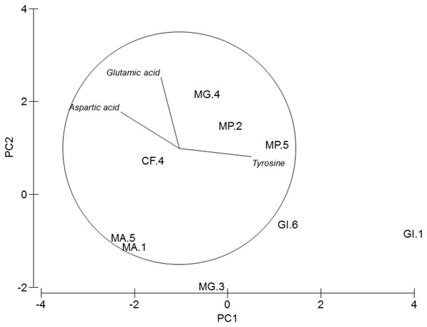 PCA of amphipods's amino acids.