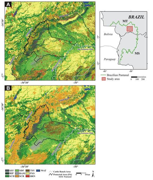 Study area location in Brazilian Pantanal, Mato Grosso (MT) and Mato Grosso do Sul (MS) states.