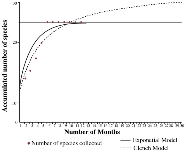 Species accumulation curve of amphibians and reptiles collected in the municipality of Nopala de Villagrán, Hidalgo, Mexico with the expected number of species from the Clench and Exponential model.