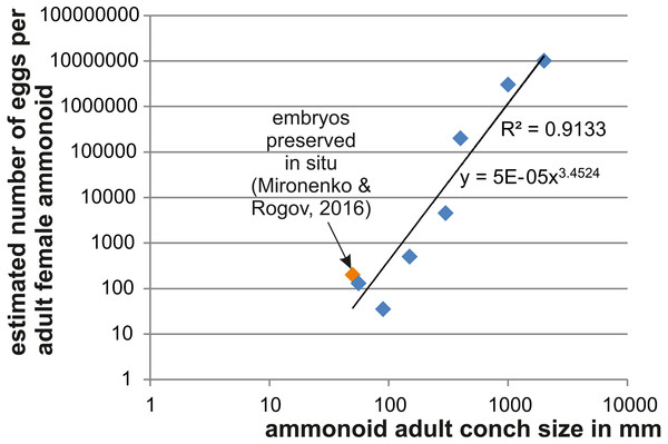 Relationship between adult conch size and the estimated number of eggs.