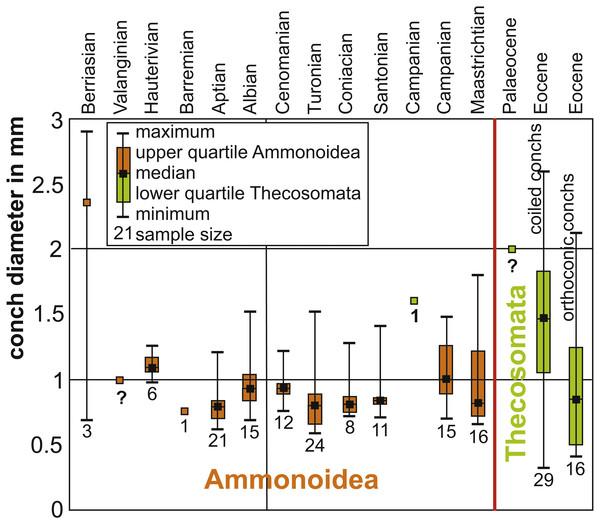 Box plots of Cretaceous ammonitella diameters and Cretaceous to Palaeogene Thecosomata conch size.
